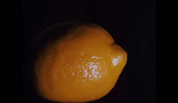Hollis Frampton Lemon experimental film