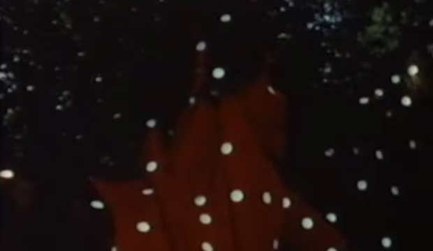 Yayoi Kusama Self-Obliteration (1967) experimental film